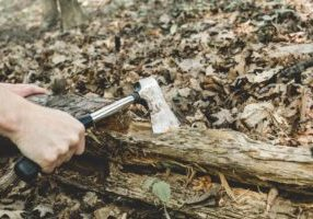 chopping-wood-in-forest_925x