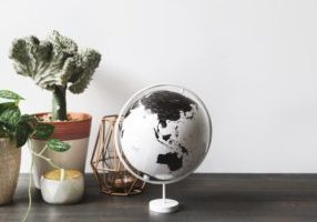 globe-and-plants-on-desk_925x